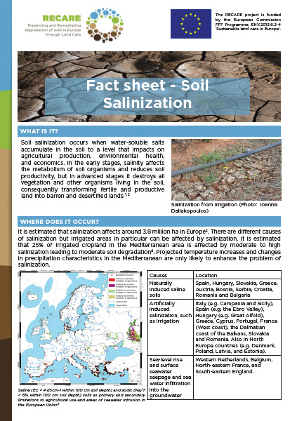 FactSheet SalinizationFrontCover200x280