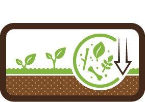 Loss of organic matter in mineral soils